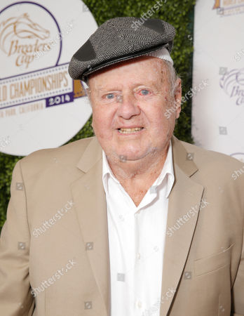 Dick Van Patten attends day 2 of the 2014 Breeders' Cup World Championships at Santa Anita Park, in Arcadia, Calif
