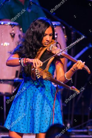 Stock Picture of Gingger Shankar performs on stage during Brian Fest: A Night To Celebrate The Music Of Brian Wilson at the Fonda Theatre, in Los Angeles