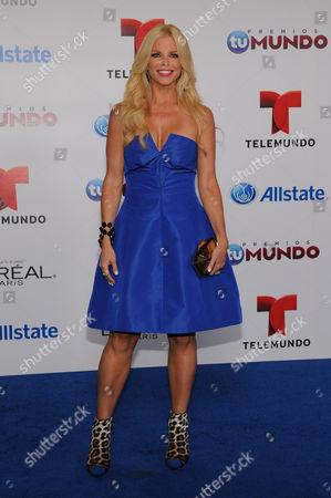 Editorial photo of Premios Tu Mundo Awards, Miami, USA