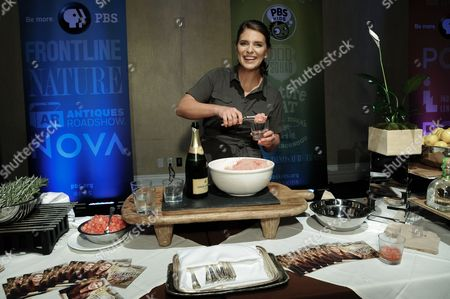 """Chef Vivian Howard smiles during """"A Chef's Life """" dessert reception at the PBS 2015 Summer TCA Tour held at the Beverly Hilton Hotel, in Beverly Hills, Calif"""