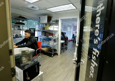 David Jang, a marketing intern at ReelSonar, works at the company's headquarters in Seattle, . Texas and Florida are usually the biggest markets for ReelSonar's fishing devices and apps, so the devastation left by Hurricanes Harvey and Irma is expected to have an impact on sales, even though the company is located thousands of miles from the damage