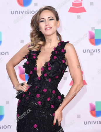Stock Image of Erika Bruni arrives at the 17th annual Latin Grammy Awards at the T-Mobile Arena, in Las Vegas
