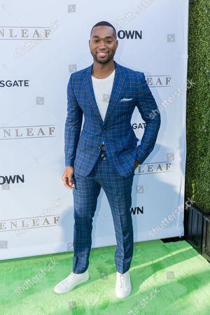 "Editorial photo of LA Premiere of Season One ""Greenleaf"" - Arrivals, West Hollywood, USA"