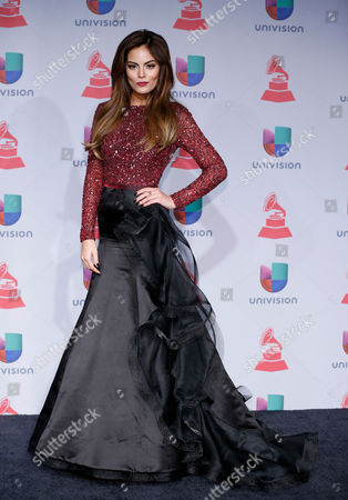 Editorial picture of 2013 Latin Grammy Awards - Press Room, Las Vegas, USA