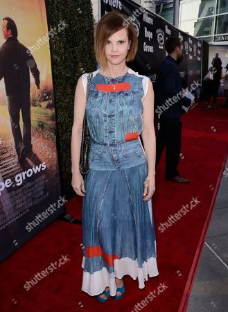 Stock Picture of Kiersten Warren seen at Los Angeles Premiere of Roadside Attractions/Godspeed Pictures 'Where Hope Grows' at Arclight Cinemas Hollywood, in Los Angeles, CA