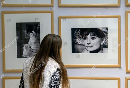 A visitor stands in front of photographs of Audrey Hepburn by Bob Willoughby during the press preview of the exhibition 'Stars of the screen - Audrey Hepburn, Liz Taylor, Grace Kelly, Marlene Dietrich - photographs taken by Milton H. Greene und Bob Willoughby' in Apolda, central Germany, . The exhibition shows more than 150 black-and-white and color photographs of the Hollywood stars. The exposition starts on Sept. 24, 2017 and lasts until Dec. 17, 2017