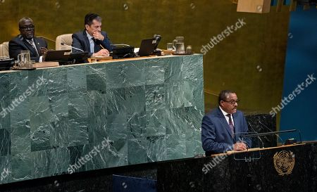 Ethiopia's Prime Minister Hailemariam Desalegn addresses the United Nations General Assembly, at U.N. headquarters