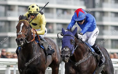 FENNAAN (right, Jimmy Fortune) beats SAM GOLD (left) in The Wedgewood Estates EBF Novice Stakes Div1 Newbury