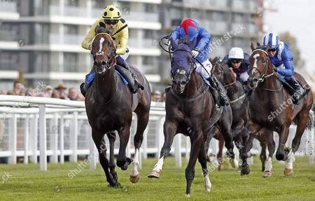 FENNAAN (centre, Jimmy Fortune) beats SAM GOLD (left) in The Wedgewood Estates EBF Novice Stakes Div1 Newbury
