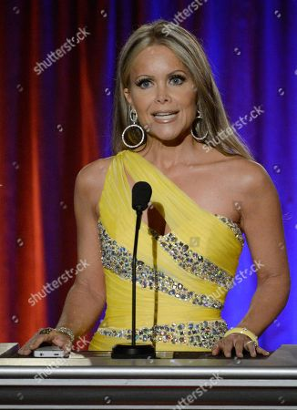 Stock Picture of Presenter Tamara Henry, of City TV of Santa Monica, speaks on stage at the 65th Los Angeles Area Emmy Awards at the Leonard H. Goldenson Theatre, in Los Angeles