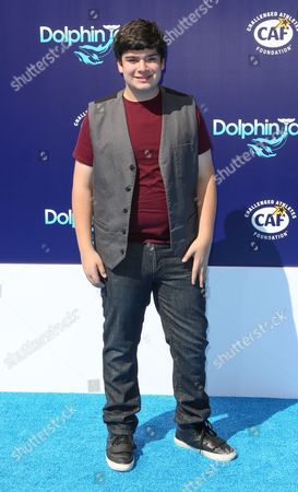 """Editorial image of LA Premiere of """"Dolphin Tale 2"""", Los Angeles, USA"""