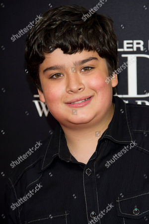 """Stock Photo of Devan Leos attends the premiere of """"Tyler Perry's Madea's Witness Protection"""" on in New York"""