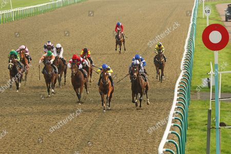 Stock Image of EASY CODE (centre yellow) ridden by James Doyle beating Bluff Crag (right) 1st The Happy Birthday Eddie Childs Handicap Stakes at Lingfield