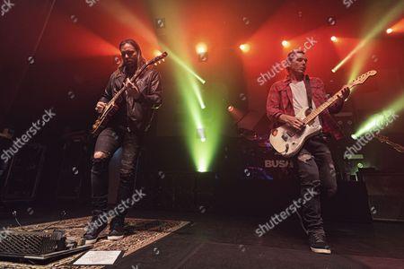 Bush - Chris Traynor, Gavin Rossdale