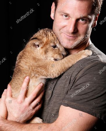 """Canadian large predator animal expert, television producer and star of ANIMAL PLANET'S """"Frontier Earth"""", Dave Salmoni and his baby lion pose for a portrait, on in New York"""