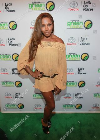 Stock Image of Adrienne-Joi Johnson is seen at the Bryan Michael Cox Breakfast Club Pre Grammy Brunch presented by Toyota Green Initiative and Music & Memory at the Four Season Hotel Beverly Hills on in Los Angeles, CA