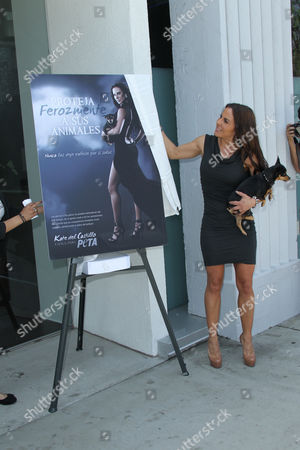 Los Angeles Ca - May 10: Actress Kate Del Castillo During the Peta Billboard 'Fiercely Protect Your Animals' Unveiling Ceremony at the Bob Barker Building On May 10 2012 in Los Angeles California People: Kate Del Castillo United States of America Los Angeles