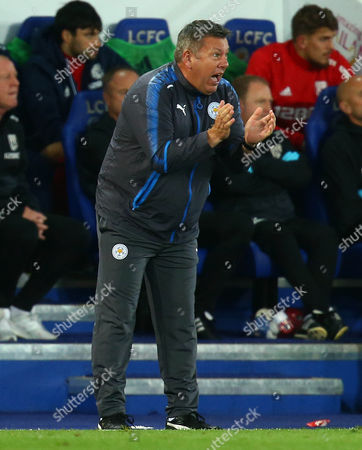An animated Leicester City manager Craig Shakespeare