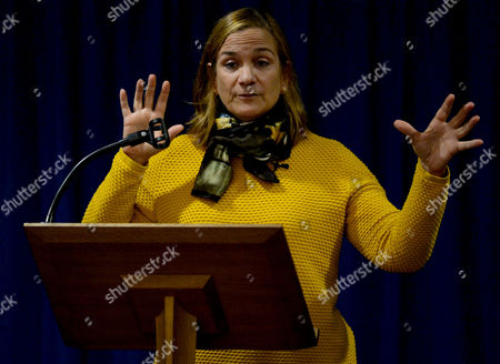 Stock Picture of Tracy Chevalier
