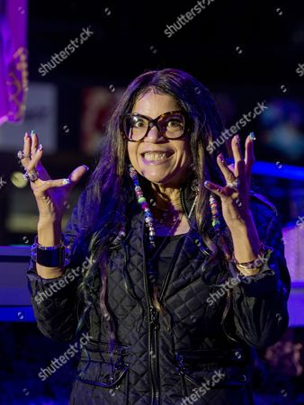 Stock Photo of Prince's sister Tyka Nelson.