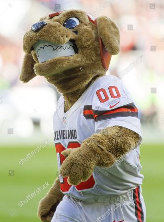 The Cleveland Brown Mascot Chomps, NFL International Series, Minnesota Vikings V Cleveland Browns, Twickenham Stadium, London, United Kingdom, 29th October 2017