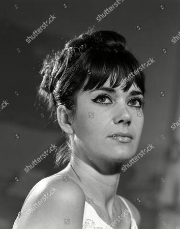Stock Image of Sally Bradley