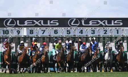 The field burst out of the barrier as Stephen Baster rides the Gai Waterhouse trained Cismontane (C-L) to victory in the Lexus Stakes on Derby Day at Flemington Racecourse in Melbourne, Australia, 04 November 2017.