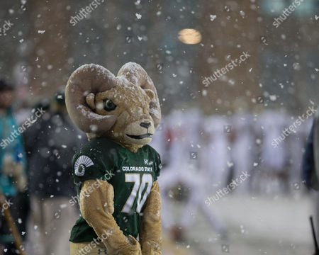 Colorado State Rams mascot Cam on the sidelines during the fourth quarter of a rival boarder war matchup between the Colorado State Rams and the Wyoming Cowboys at War Memorial Stadium, Laramie WY, Cowboys win 16 -13 Scott D Stivason/Cal Sport Media