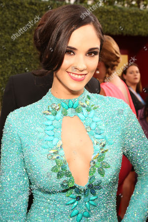 Alexandra Pomales arrives at the 2014 Billboard Latin Music Awards on at the BankUnited Center in Coral Gables, Fla