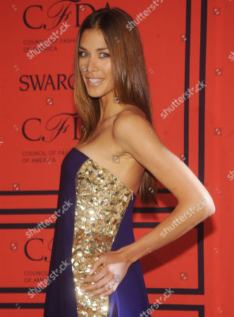 Stock Image of Diana Sanchez attends the 2013 CFDA Fashion Awards at Alice Tully Hall on in New York