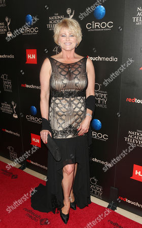 Judi Evans seen at The 40th Annual Daytime Emmy Awards Redtouch Red Carpet, on Sunday, June, 16, 2013 in Beverly Hills