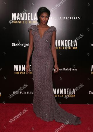 Editorial photo of NY Special Screening of Mandela: Long Walk To Freedom, New York, USA - 25 Nov 2013