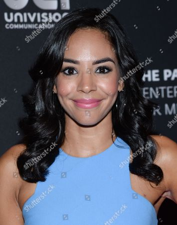 """Entertainment Weekly correspondent, Nina Terrero, arrives at """"A Night with Mario Kreutzberger"""", honoring """"Don Francisco"""" at The Paley Center for Media, in New York"""