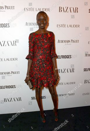 Stock Picture of Model Alex Wek attends Harper's Bazaar Women of the Year Awards 2013 at Claridge's Hotel, in London