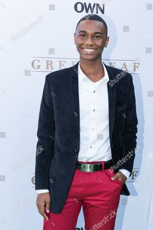 """Stock Image of Zachary S. Williams arrives at the season one premiere of """"Greenleaf"""" at The Lot, in West Hollywood, Calif"""