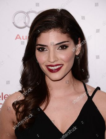Actress Amanda Setton attends the 2014 Television Academy Hall of Fame on in Beverly Hills, Calif