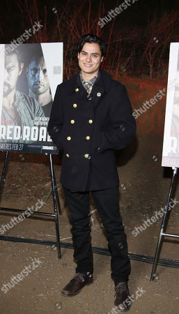 """Editorial photo of LA Premiere Screening of """"The Red Road"""", Los Angeles, USA - 24 Feb 2014"""