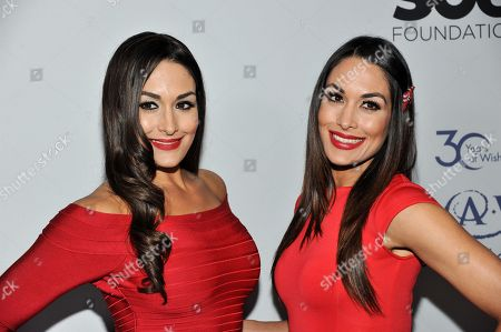 Stock Image of Nicole Garcia-Colace, and Brianna Garcia-Colace arrive at The Wishing Well Winter Gala at the Beverly Wilshire Hotel, on Tuesday, December, 4, 2013 in Beverly Hills, Calif
