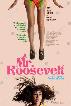 Mr. Roosevelt (2017) Poster Art. Noel Wells