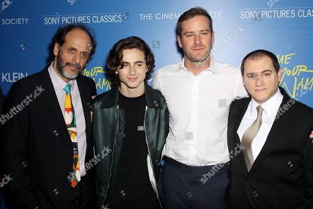 Luca Guadagnino (Director), Timothee Chalamet, Armie Hammer, Michael Stulbarg