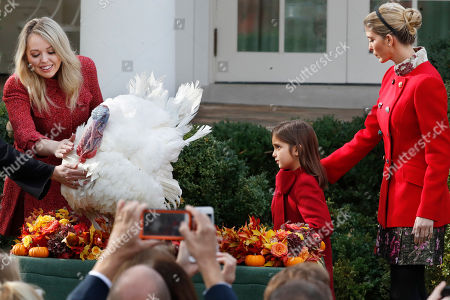Arabella Kushner, Tiffany Trump, Ivanka Trump. Tiffany Trump, left, touches Drumstick the turkey, with Ivanka Trump, right, and her daughter Arabella Kushner, after President Donald Trump pardoned the turkey in an annual presidential tradition, in the Rose Garden of the White House in Washington
