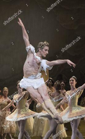Editorial image of 'Sylvia' Ballet performed by the Royal Ballet at the Royal Opera House, London, UK, 22 Nov 2017