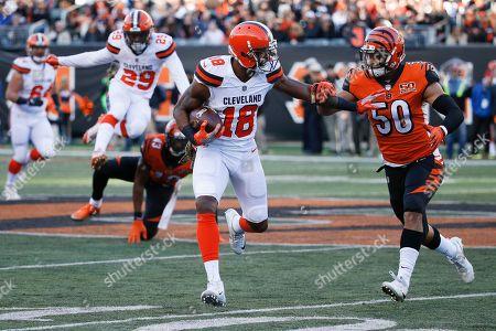 Kenny Britt, Jordan Evans. Cleveland Browns wide receiver Kenny Britt (18) runs the ball against Cincinnati Bengals linebacker Jordan Evans (50) in the second half of an NFL football game, in Cincinnati