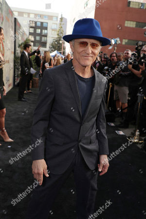 David Patrick Kelly pictured at Showtime's TWIN PEAKS premiere on in Los Angeles
