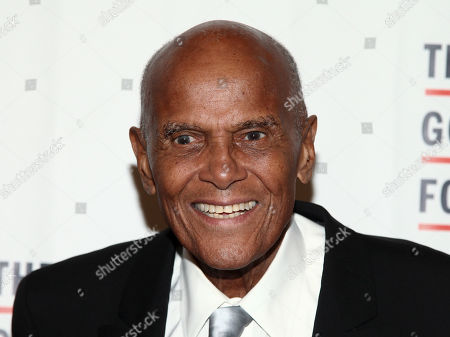 Harry Belafonte attends the The Gordon Parks Foundation Annual Awards Dinner and Auction at Cipriani 42nd Street, in New York