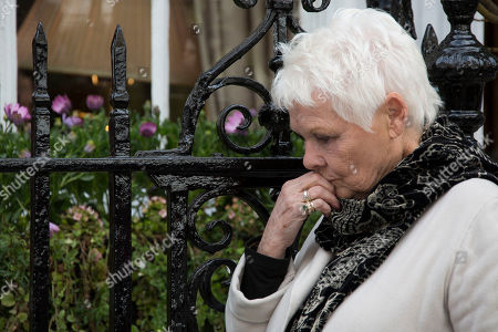 Actress Dame Judi Dench is photographed reacts on hearing Playwright Sir David Hare's memories of Sir John Gielgud, before unveiling a blue plaque commemorating Sir John Gielgud in central London, outside the Westminster home where he lived for 31-years, . The blue plaque commemorates famed English actor and director Gielgud whose career spanned eight decades until his death in May 2000