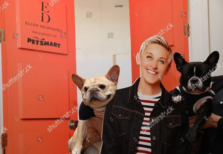 IMAGE DISTRIBUTED FOR PETSMART - In this image released, Instagram pet celebrities Walter Cronkite (74.7K followers) and Oscar (155K followers) pose with Ellen DeGeneres, a fun cardboard cut-out photo op featured at the ED Ellen DeGeneres-PetSmart brand launch event in New York City. This is Ellenâ?™s first pet line, available exclusively at PetSmart beginning next month. PetSmart and ED Ellen DeGeneres inked a multi-year deal for the new brand, which will be available Feb. 1 on PetSmart.com and through a phased roll-out in nearly all of PetSmartâ?™s more than 1,500 stores by next month. Walter and Oscar are wearing apparel from the inaugural Spring line, which features hundreds of pet products perfect for the spring season, such as apparel and accessories, as well as toys, beds, feeding bowls and an at-home grooming naturals line