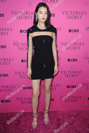 Editorial photo of Victoria's Secret Fashion Show viewing party, Arrivals, New York, USA - 28 Nov 2017