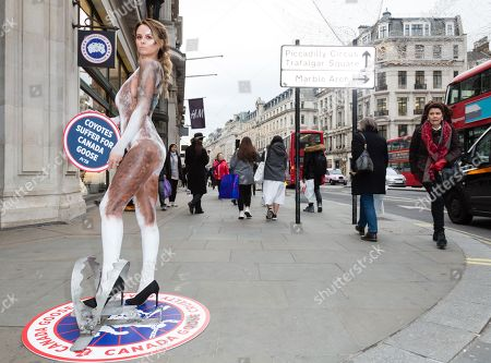 Bodypainted as a coyote, glamour model Rhian Sugden protests Canada Goose's use of fur