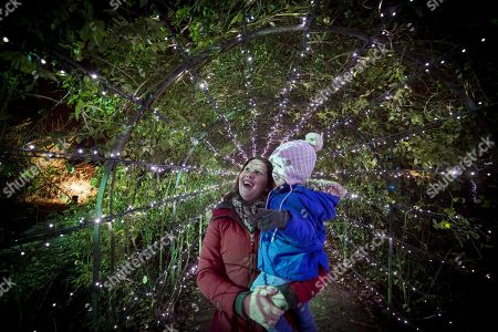 Stock Image of Christmas comes to Dunham Massey as the hall and garden are lit to create an illuminated world for visitors to walk through. Sebastian Jones , two and mum Joanna Jones.